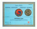 Lotus Palm Certificate